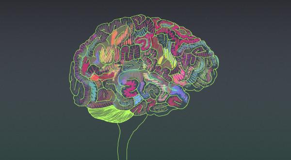 Хүүхдийнхээ оюун ухааныг хэрхэн хөгжүүлэх вэ?