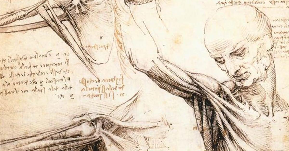 Италийн сэргэн мандалтын үе - Урлаг соёл